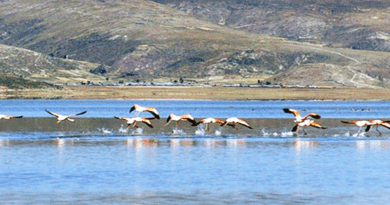 Laguna de Parinacochas Ayacucho