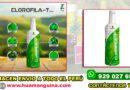 Clorofila-T Pro by Teoma