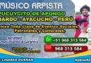 Pucuycito De Apongo