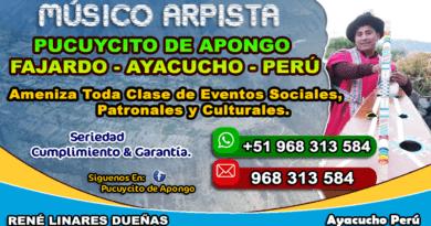 Pucuycito De Apongo Arpista Ayacucho