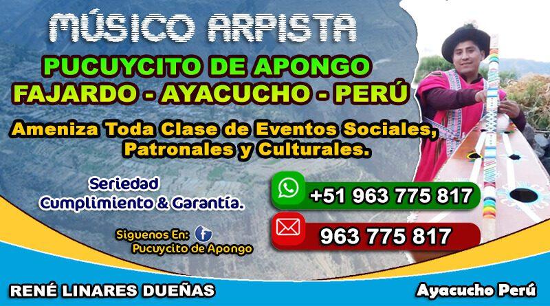 Pucuycito De Apongo Arpista Ayacucho 2021