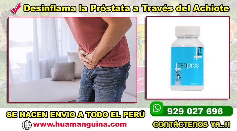 Teo Pros by Teoma Huamanguina