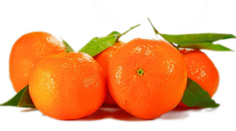 Fruta Naranja Ayacucho